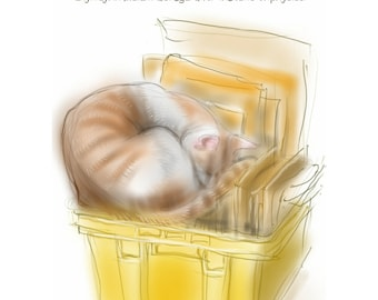 Funny cat greetings card / birthday card: 'The Yellow Box'' - Cat logic, cat in a box, drawing by Nancy Farmer.