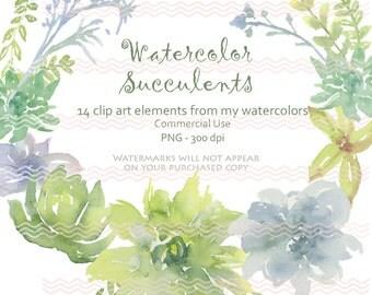 Digital Soft Watercolor Succulents Clip Art Card Making Invites Scrapbooking Commercial Use  PNG 300 DPI