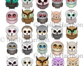 25 Little Owls - Clipart -  Molly Harrison Fantasy Art - Owl Art - Digi Stamp /Digital Stamp / Digistamp - Instant Download