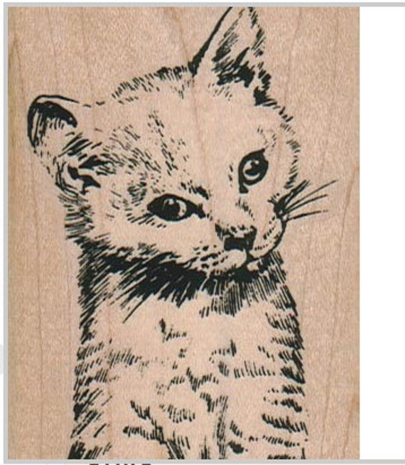 Cat rubber stamp kitten sitting stamping black and white for Rubber stamps arts and crafts