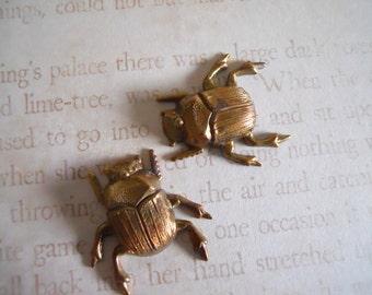 Oxidized Brass Bug Beetle Findings