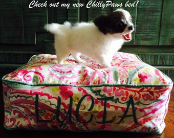 Dog Bed - Watercolor Paisley Twill - Dog Beds -  Includes Embroidered Personalization