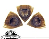 3 - Light Brown - Cut - Peacock Feather - Eyes - Petals - Leaves - Millinery - Steampunk