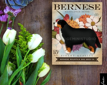 Bernese Mountain Dog Seed Company dog  illustration graphic art on canvas panel by stephen fowler Pick A Size