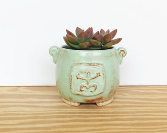 Stoneware Succulent Planter Pot in Pistachio Green Shino Glaze with Frog Stamp