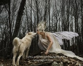 Winter Faerie and Wolf, Greeting Card by Renae Taylor
