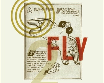 Fly Collage Print
