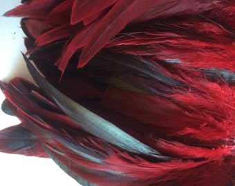 RUSTICA COQUE FEATHERS  / Iridescent Black Red   / 261