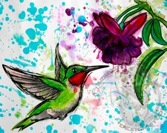 Hummingbird and Fuschia Giclee Print Watercolor All Sizes
