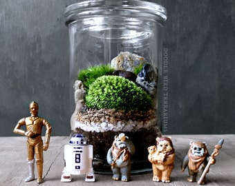 Star Wars R2-D2 C-3Po Ewok Terrarium Gift Set Collectible Memorabilia