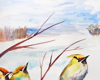"Watercolor Painting, Waxwings, Original Art, 11""x15"""