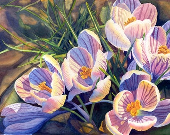 Crocus Art Watercolor Painting Print by Cathy Hillegas, 12x18, watercolor flowers, spring flowers art, purple, blue, green, yellow, brown