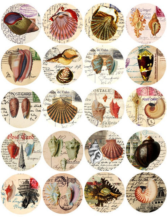 sea shell postcards collage sheet 2 inch circles digital download summer nautical sea life printables ephemera ocean beach decor