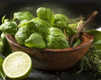 Organic Lime Basil Heirloom Herb Seeds