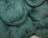 Studio June Yarn Andrea Mae DK, Superwash Merino, DK/Light Worsted Weight, Color: Frozen Pond Lot A
