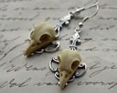 Bird Skull Earrings - Cameo earrings - Silver or Brass Ornate Bird Skull glass dangles pearl Gothic Goth Raven
