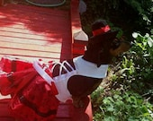 Switzerland the Swiss costume I Designed for the Hollywood Movie Wiener Dog Internationals