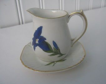 Vintage Pitcher/Dish Set Coitter Freres Interlaken Switzerland Souvenir Blue Flower