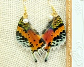 SUNSET Moth Butterfly Earrings, Urania Riphaeus, Pearl Earrings, Gold Earrings, Dangle Earrings, Nature Earrings, Wing Earrings, Butterflies