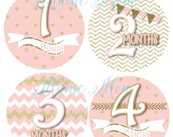 FREE GIFT, Baby Girl Monthly Stickers,  Milestone Bodysuit Month Stickers Bunting Banner  Blush Pink Gold Gift Shower Photo Prop