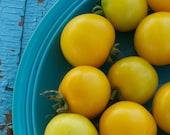 Livingston Gold Ball Yellow Tomato Seeds
