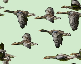 Canada Geese Cotton fabric