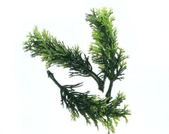 20 Green Sprigs
