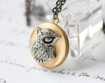 Owl Locket Brass Mixed Metal Necklace with Oxidized Sterling Silver Chain