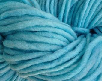 Aqua Blue Wool Yarn Bulky Chunky Weight Hand Dyed Wool Yarn Pencil Roving in Aqua Cove 60 yards Handpainted Turquoise Blue