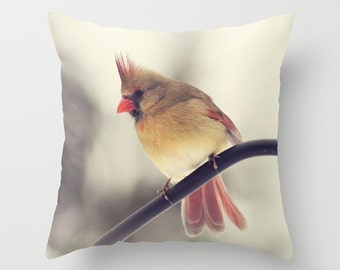 Decorative pillow cover, female cardinal photo, female cardinal #2 throw pillow, red cream pillow, winter bird pillow, living room decor