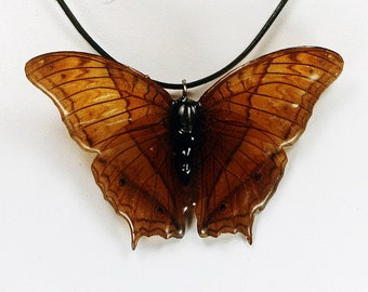 Real Butterfly Necklace - The Cruiser - Hand Cast Resin