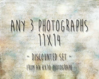 DISCOUNT SET of 3 11x14 Prints - 20% Off - Your Choice of Three 8x10 Photographs as 11x14 Photographs