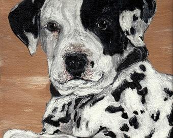 Pet Portraits - 8 x 10 Acrylic on Canvas