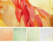Sunkissed  Watercolor Texture Collection