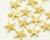 PD-960-MG / 2 Pcs - Asterid Starfish Pendant, Matte Gold Plated over Brass / 11mm x 10.6mm