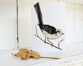 long tailed tit card eco