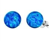 10mm Australian Pacific Blue Opal Ball Stud Post Earrings, Oceans, Solid 14K White Gold