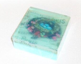Robin's Nest, Robin Eggs Blue, Free Shipping