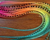 Pink Orange Yellow Lime True Turquoise Long Feather Hair Extensions Colorful Hair Feathers Hair Accessories Hair Bling Bright Feathers 8