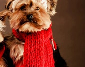 Dog Hat and Dog Scarf for Dog - Red