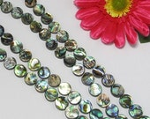 Abalone Shell 12mm round Loose Beads