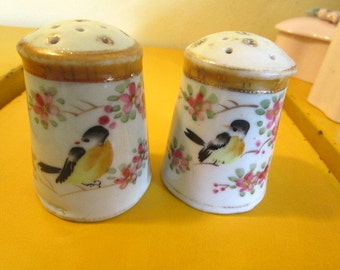 IMPERIAL-Signed Porcelain BIRDS Vintage Hand-Painted Stunning Matching Salt & Pepper Shakers - Mid Century Marvels