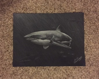 11x14 Print From Original Charcoal Drawing Great White Shark with Fish and Lurking Sharks in the Distance