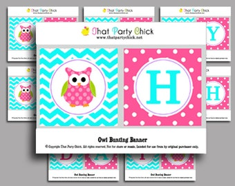 Happy Birthday Owl Printable Bunting Banner - Instant Download - Pink Lil' Owl