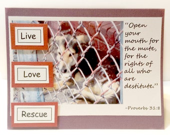 Proverbs 31:8  Live Love Rescue  Greeting Card