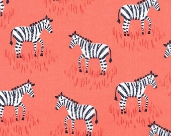 Mini Zebras in Coral
