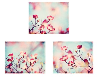 Pink Dogwood Photography Set, aqua blue floral tree nature nursery wall art spring photographs pale girls room decor cream branches blossoms