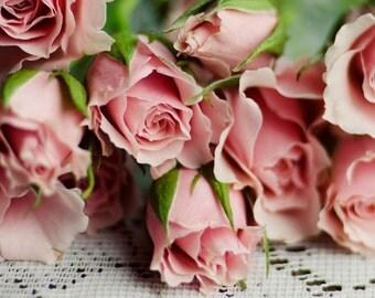 pink flower art, rose art print, cottage chic decor, romantic flower art, floral nursery decor, shabby flower art, pink and white