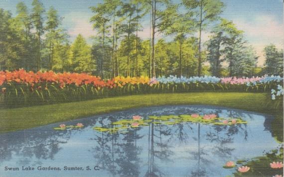 swan lake gardens sumter south carolina vintage linen
