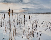Cattails in the Snow Wyoming - Watercolor Original Painting Large UNFRAMED
